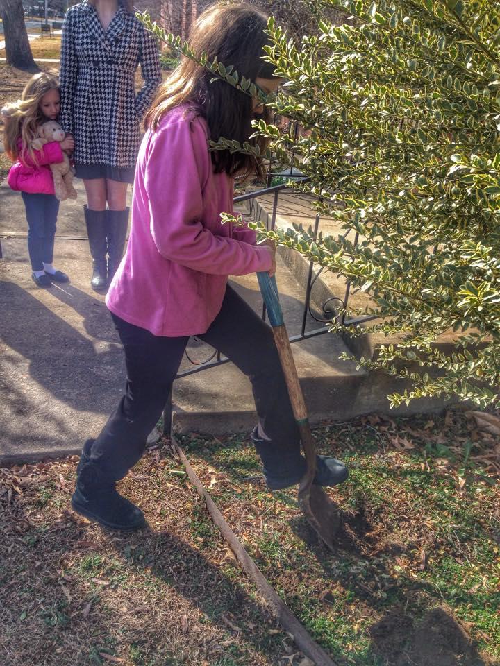 Digging for Alleluias