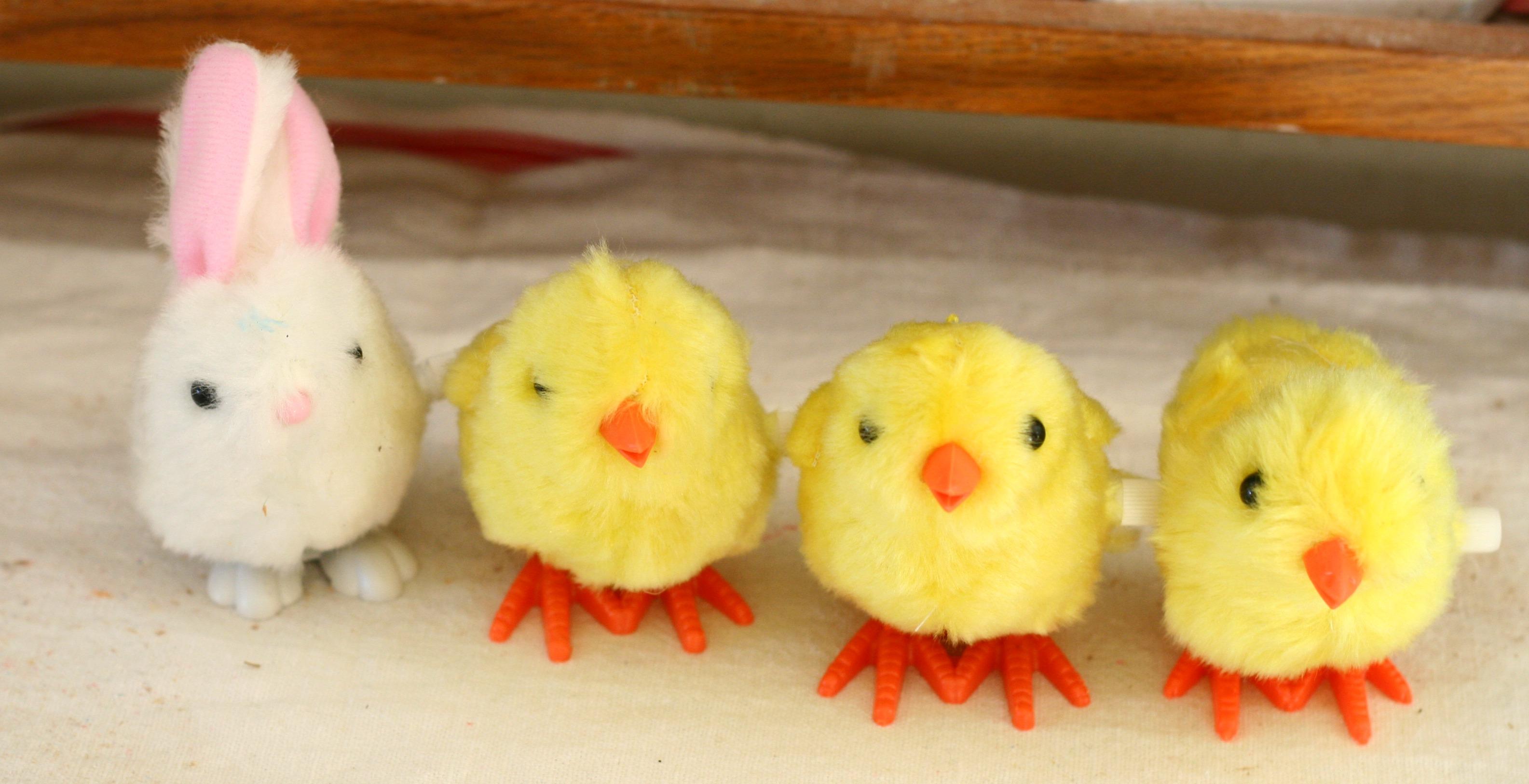 Chicks and Bunny